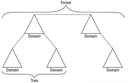 سه جزء اصلی در ساختار اکتیو دایرکتوری